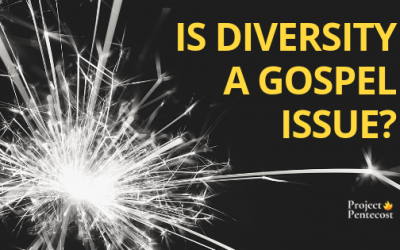 Is diversity a gospel issue?